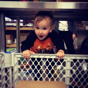 The Great Logan Attempts Escape at the shop